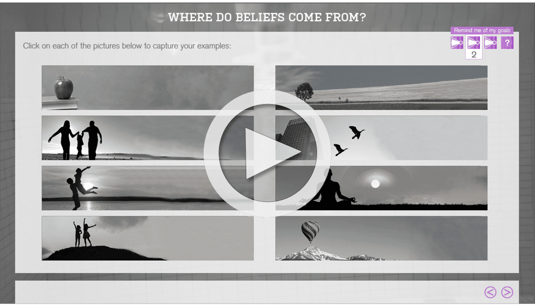 Online Training - Beliefs