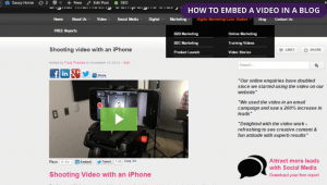 Saucy horse - How to embed a video in a blog
